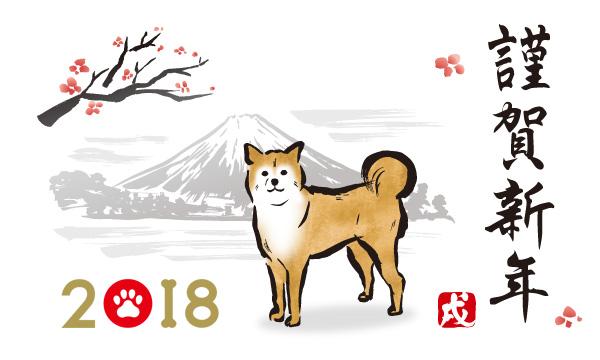 2018-info